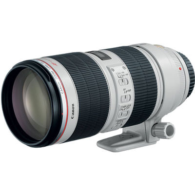 Canon 70-200mm f2.8 concert photography