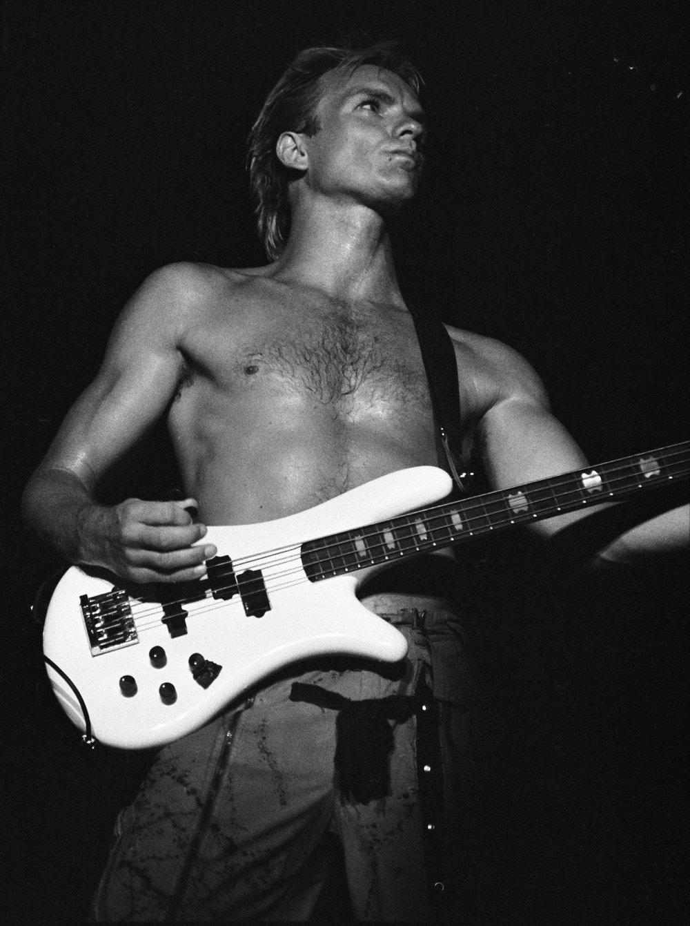 Sting by Julian David Stone